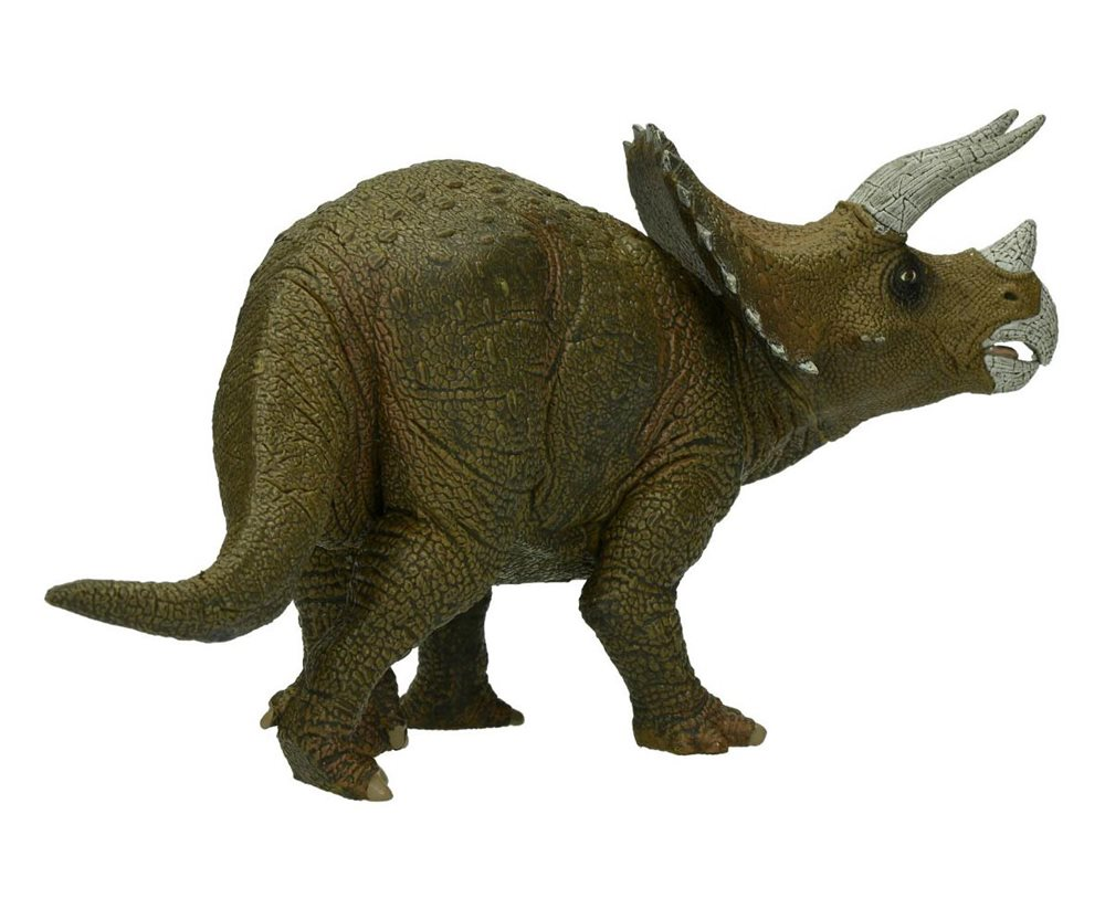 What was the triceratops diet?