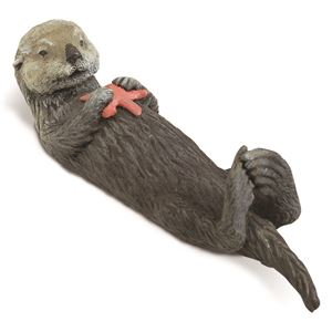 Sea Otter with Starfish