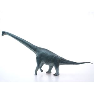 Brachiosaurus Desktop Model
